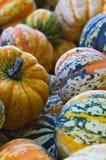 Uma pilha de abóboras coloridas imagens de stock