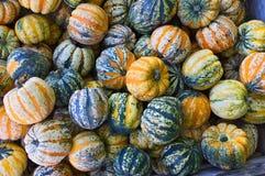 Uma pilha de abóboras coloridas fotos de stock royalty free