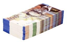 Pilha isolada de 100 contas do NIS Imagem de Stock