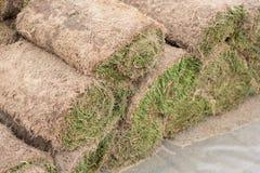 Uma pilha de relvado gramíneo nos rolos, no rolo da grama, de modo operacional na horticultura ou em ajardinar fotografia de stock
