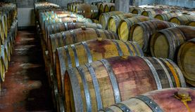 Uma pilha de tambores de vinho em um vinhedo fotos de stock royalty free