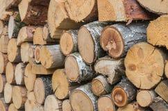 Uma pilha do coto de madeira cortado fotografia de stock royalty free