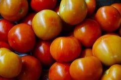 Uma pilha do tomate imagens de stock