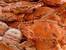 Uma pilha dos caranguejos Fotos de Stock