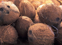 Uma pilha dos cocos no contador foto de stock royalty free