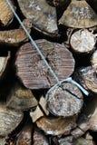 Uma pilha dos logs de madeira Lapland Finlandia imagens de stock