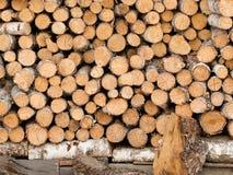 Uma pilha dos logs do vidoeiro armazenados sobre se Imagens de Stock