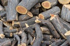 Uma pilha grande dos logs Imagem de Stock Royalty Free
