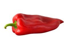 Uma pimenta vermelha Foto de Stock Royalty Free