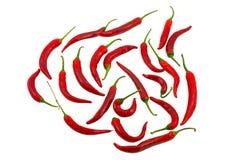 Uma pimenta vermelha afiada Foto de Stock