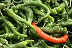 Uma pimenta vermelha em um mar de pimentas de pimentão verdes Fotografia de Stock