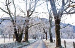 Uma pista fria gelado do país Imagem de Stock Royalty Free