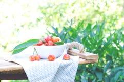 Uma placa branca com a cereja doce fresca no jardim foto de stock