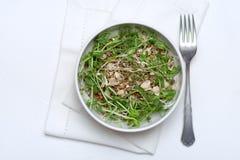 Uma placa da salada micro-verde vegetarianism Dieta saudável imagens de stock