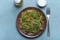 Uma placa da salada micro-verde vegetarianism Dieta saudável fotografia de stock royalty free
