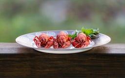 Uma placa de crawfishes cozinhados foto de stock royalty free
