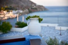 Uma planta de potenciômetro em um terraço em Grécia Imagem de Stock