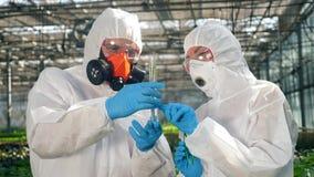 Uma planta no líquido químico está sendo observada por dois biólogos video estoque