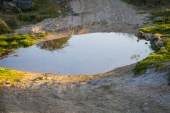 Uma poça da água foto de stock