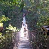 Uma ponte através do rio de Capilano foto de stock royalty free