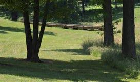 Uma ponte de madeira de Brown ao longo de Forest Path fotografia de stock