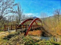 Uma ponte de madeira com um cofre-forte de madeira semicircular imagem de stock royalty free