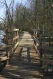 Uma ponte de madeira em uma floresta adiantada da mola, Bélgica Fotografia de Stock