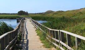 Uma ponte de pedestre de madeira Imagem de Stock Royalty Free
