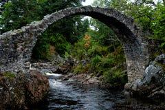 Uma ponte de pedra antiga situada em Carrbridge, Escócia fotos de stock royalty free