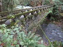 Uma ponte de pedra velha em Whatcom cai parque Imagens de Stock Royalty Free