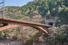 Uma ponte raiilway através do rio no túnel Imagens de Stock Royalty Free