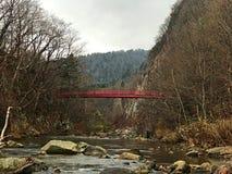 Uma ponte vermelha sobre a árvore do outono, céu nebuloso com córrego Imagem de Stock Royalty Free