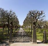 Uma porta ao parque Fotografia de Stock
