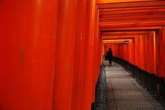 Uma porta de madeira vermelha na floresta imagens de stock