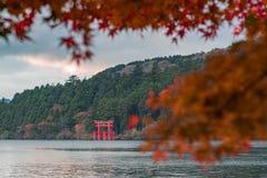 Uma porta vermelha icónica da posição do santuário do jinja de Hakone no lago Ashi com as folhas de bordo vermelhas borradas fotos de stock