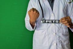 Uma posição do doutor, guarda o texto de papel dos animais de estimação no fundo verde Conceito médico e dos cuidados médicos fotos de stock