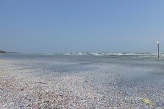 Uma praia com uma pilha de shell do mar e um sinal que está no mar fotos de stock