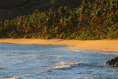 Uma praia da areia em uma ilha tropical, Fiji foto de stock royalty free