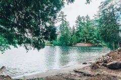 Uma praia do lago com uma floresta no fundo fotos de stock