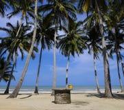 Uma praia próxima boa Imagem de Stock