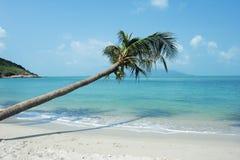 Uma praia tropical. Fotografia de Stock Royalty Free