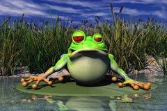 Uma râ que senta-se na lagoa Foto de Stock