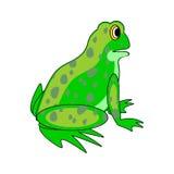 Uma rã verde dos desenhos animados engraçados Fotografia de Stock Royalty Free