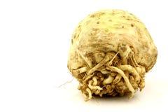 Uma raiz de aipo fresca Foto de Stock