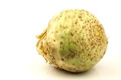 Uma raiz de aipo fresca Fotografia de Stock
