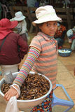 Uma rapariga que vende o gafanhoto secado Fotos de Stock Royalty Free
