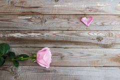 Uma rosa da cor pastel no fundo de madeira Fotografia de Stock