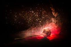 Uma rosa murchando significa amor perdido, divórcio, ou um relacionamento mau, mortos aumentou no fundo escuro imagem de stock royalty free