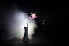 Uma rosa murchando significa amor perdido, divórcio, ou um relacionamento mau, mortos aumentou no fundo escuro fotografia de stock