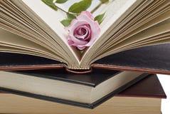 Uma rosa no livro. Fotos de Stock Royalty Free